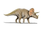 imagem triceratops