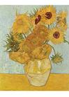 imagem Vincent Van Gogh - Doze girassóis numa jarra