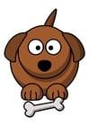 imagem z1-cachorro