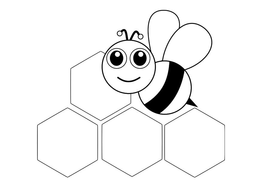 P gina para colorir abelha parte da frente img 29045 for Immagini api per bambini