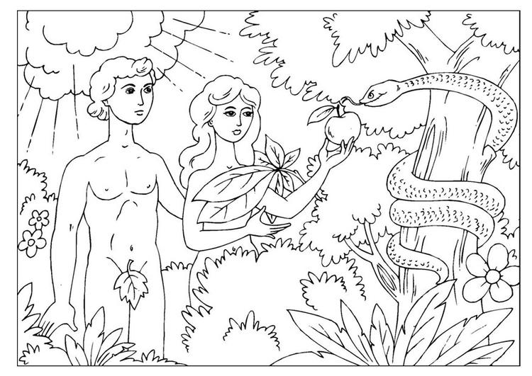 Página para colorir Adão e Eva - img 25966.