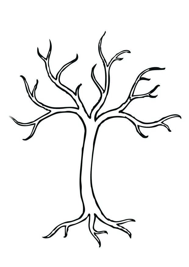 coloring pages robin tree - photo#43