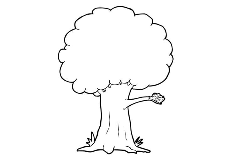 Página Para Colorir árvore