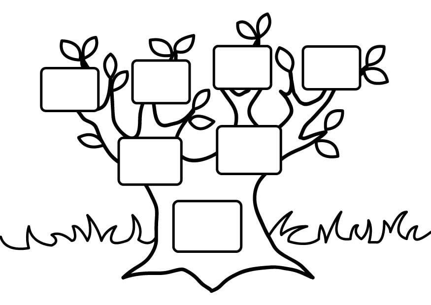 Página Para Colorir árvore Genealógica Vazia