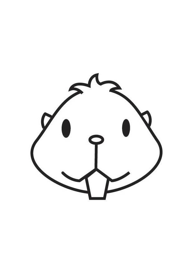 Desenho Para Colorir Cabeca De Hamster Imagens Gratis Para Imprimir