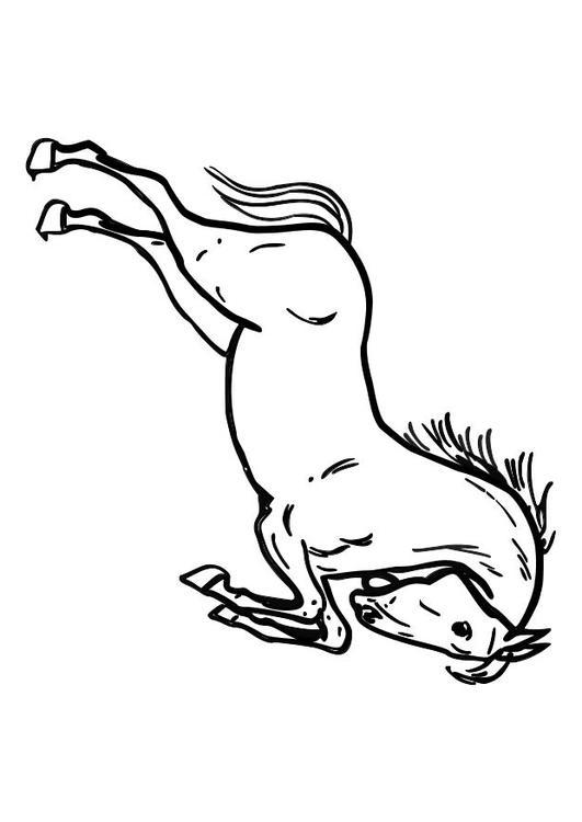P 225 Gina Para Colorir Cavalo Empinando Img 10362