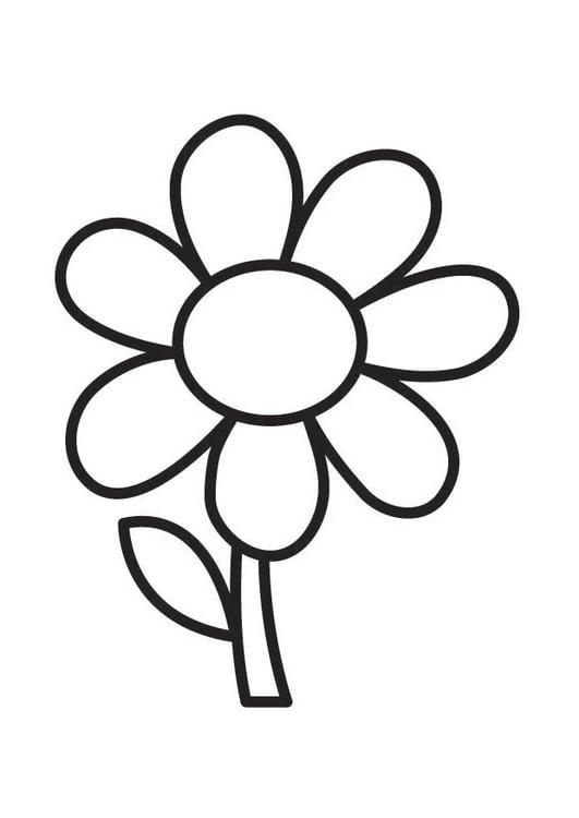 página para colorir flor img 18352