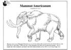 mamute americano
