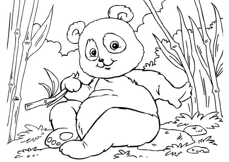 Página Para Colorir Panda