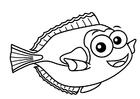 peixe cirurgião