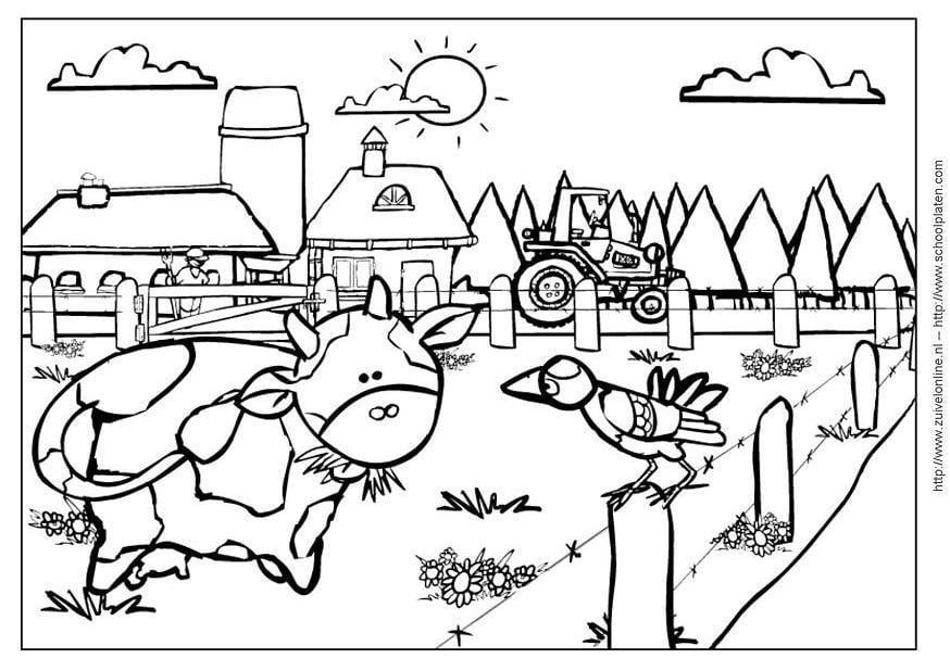 P gina para colorir vaca2 img 6781 for Fattoria immagini da colorare